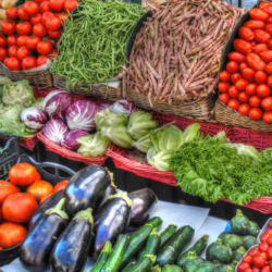 An array of vegetables are shown on display.