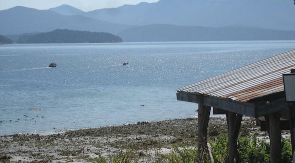 A photo of the beach at Klahoose village looking out onto the water.