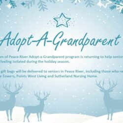 L'affiche de Adopt-a-grandparent