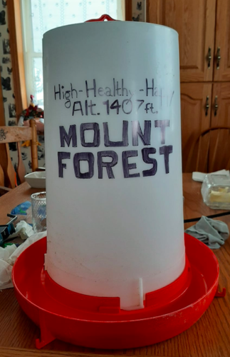 Maddy Smith raises chickens and quails, and said her idea for the sticker came from this bird water tower she made.