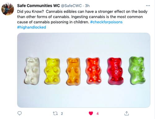 Ingesting cannabis is the most common cause of cannabis poisoning in children.