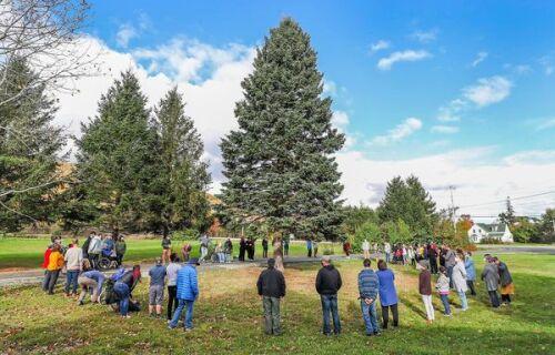Une foule de gens entourant un arbre de Noël géant dans un champ.