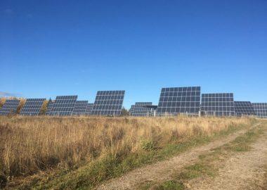 Plusieurs panneaux solaires près de la route 11