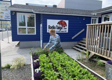 Une employée de l'AFCY jardine devant les bureaux de l'association.