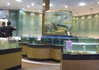 Seafood restaurant / 海鲜 By Old Dragon Head, Shanhaiguan / 山海关 老龙头附近的饭馆 via Flickr (CC BY SA, 2.0 License)