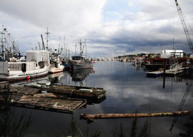 Mayors support fish farms