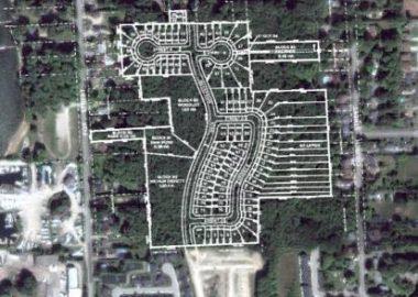 Image de la forêt de 30 acres que le groupe veut protéger.