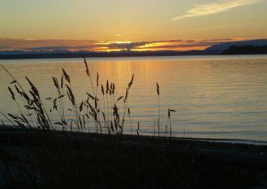 Cortes sunset