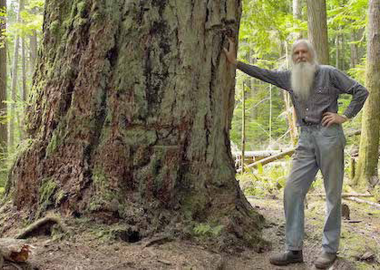 Title image: Ron Wolda in the Community Forest. TheCommunity Forest initiativeis one that Adam McKenty uses as an example of steps towards Community Economic Development.