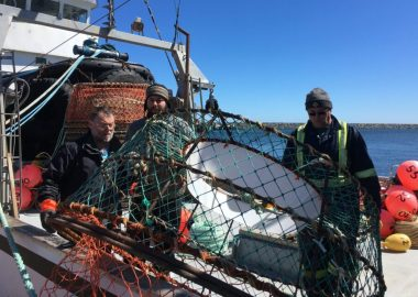 Fishing crew work on the boat Cap Adele on a sunny day at sea.