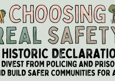Poster for Choosing Real Safety campaign. Light green background with stylized text in pink, green, brown and black, reading