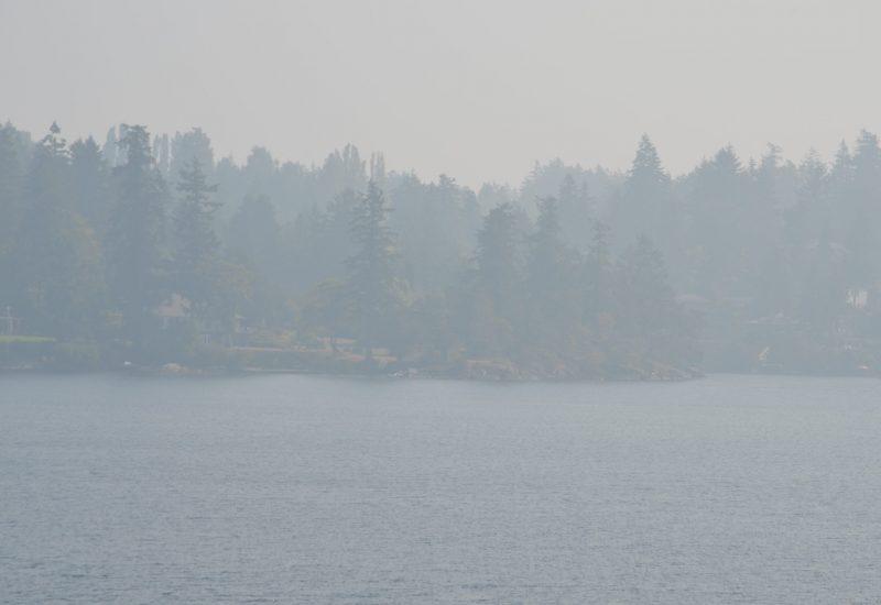Une épaisse fumée grise obscurcie le ciel de North-Saanich, rendant la visibilité quasi-nul ce vendredi.