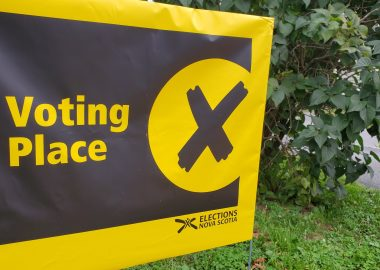 A yellow sign on a lawn in front of a bush indicates where to vote