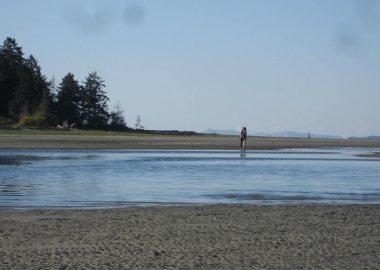 Smelt Bay on Cortes Island – Roy L Hales photo