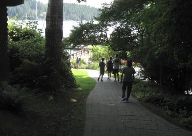 Path to Gorge Harbour dock through a wooded area on a sunny day
