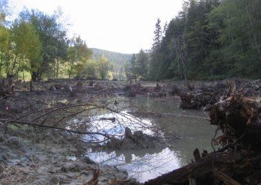A pond within a freshly verturned landscape