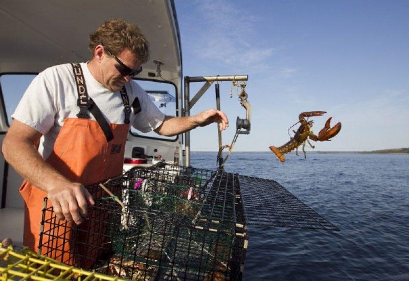 Les pêcheurs auront jusqu'au 18 octobre pour déposer une demande. - Photo tirée du site web cbj.ca