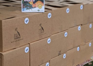 Picture showing food boxes containing freshly-farmed produce to be delivered to some members of the black community in Victoria B.C.