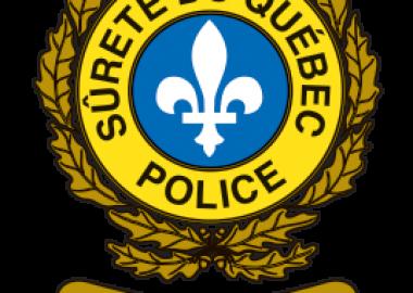 SQ logo