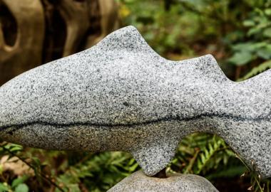stone to be something else