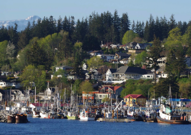 Fishing boats in front of city residences in Campbell River on a sunny day