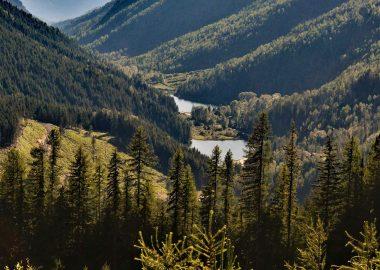 Wilderness near the proposed Zincton Mountain Resort between New Denver and Kaslo