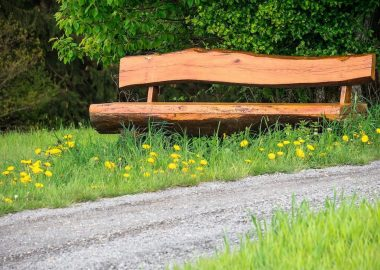 A handmade wooden bench sits by a path amongst grass and dandelion flowers.