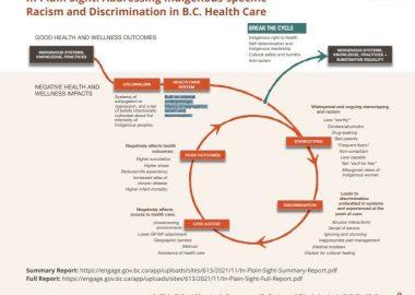 infographie décrivant un système aboutissant à du racisme dans la santé
