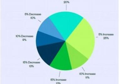 An pie chart showing the responses to the City Budget Survey question regarding policing budget.