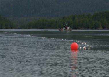 A red bouy is seen in the water off the coast near Prince Rupert. There is a forrested mountain and boat in the distance