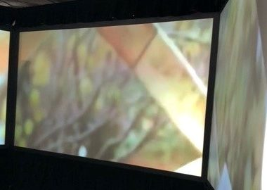 A large panoramic multimedia on a projector screen following in a curvilinear fashion.