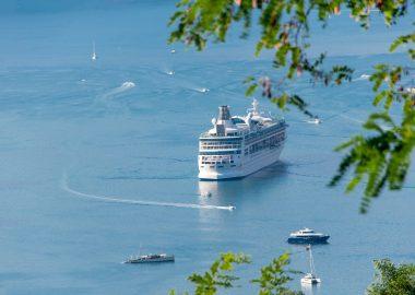 Ferry sur une mer calme avec quelques petits bateaux et un aperçu de feuillages d'arbre au premier plan