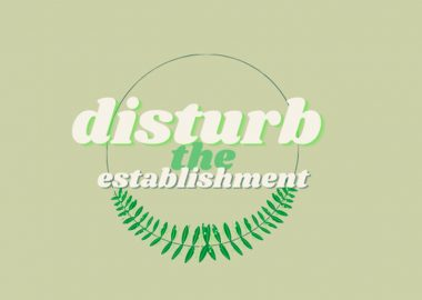 An image of the Disturb the Establishment logo over a green background. The logo says,