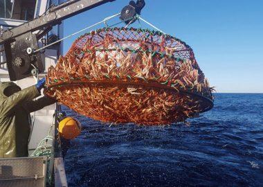 Le programme de Prestation aux pêcheurs permet d'éponger une partie des pertes de la saison 2020. – Photo archives CJTB