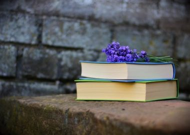 Deux livres avec fleurs violettes sur une roche en avant d'un mur en briques.