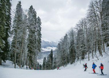 Une pente de ski bordée d'arbres. On voit trois personnes en train de skier, tout petit en bas à droite de la photo.
