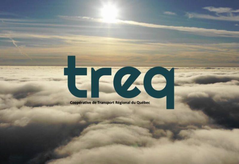 Logo de TREQ