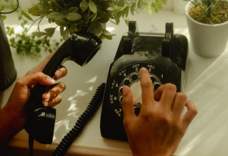 Hands dial an old fashioned phone on a white table with potted plants around it.