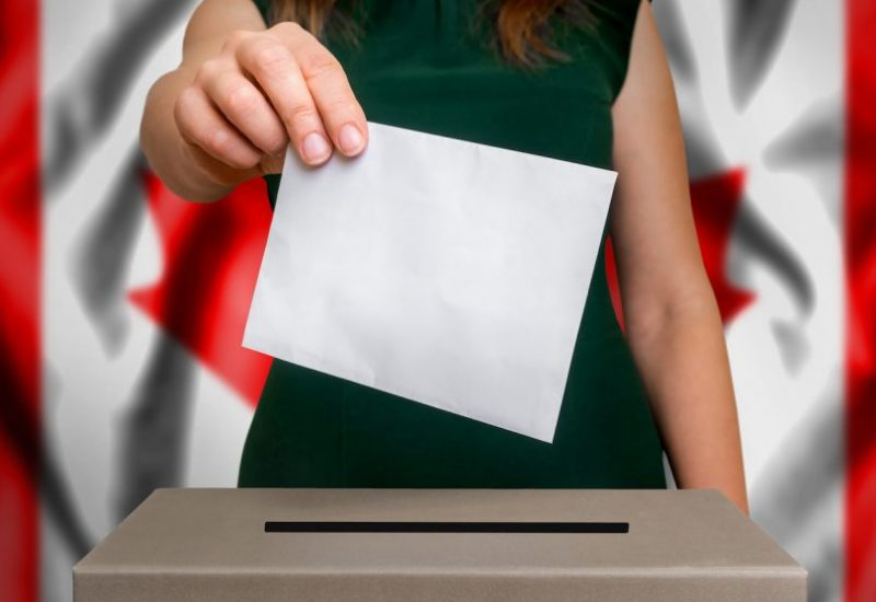 Quels sont les enjeux prioritaires pour les femmes dans ces élections. Photo : Istock